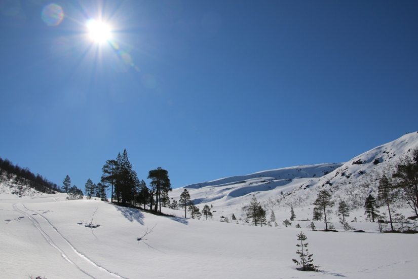 Haugadalen på Nordmøre – april2016